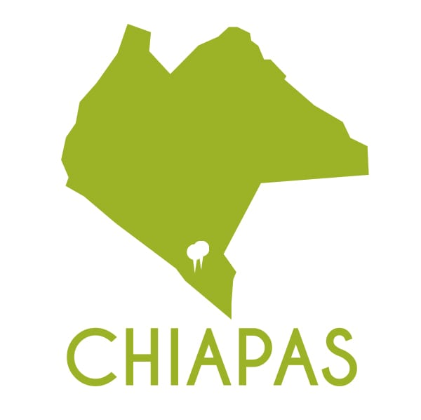 Cafés de Chiapas
