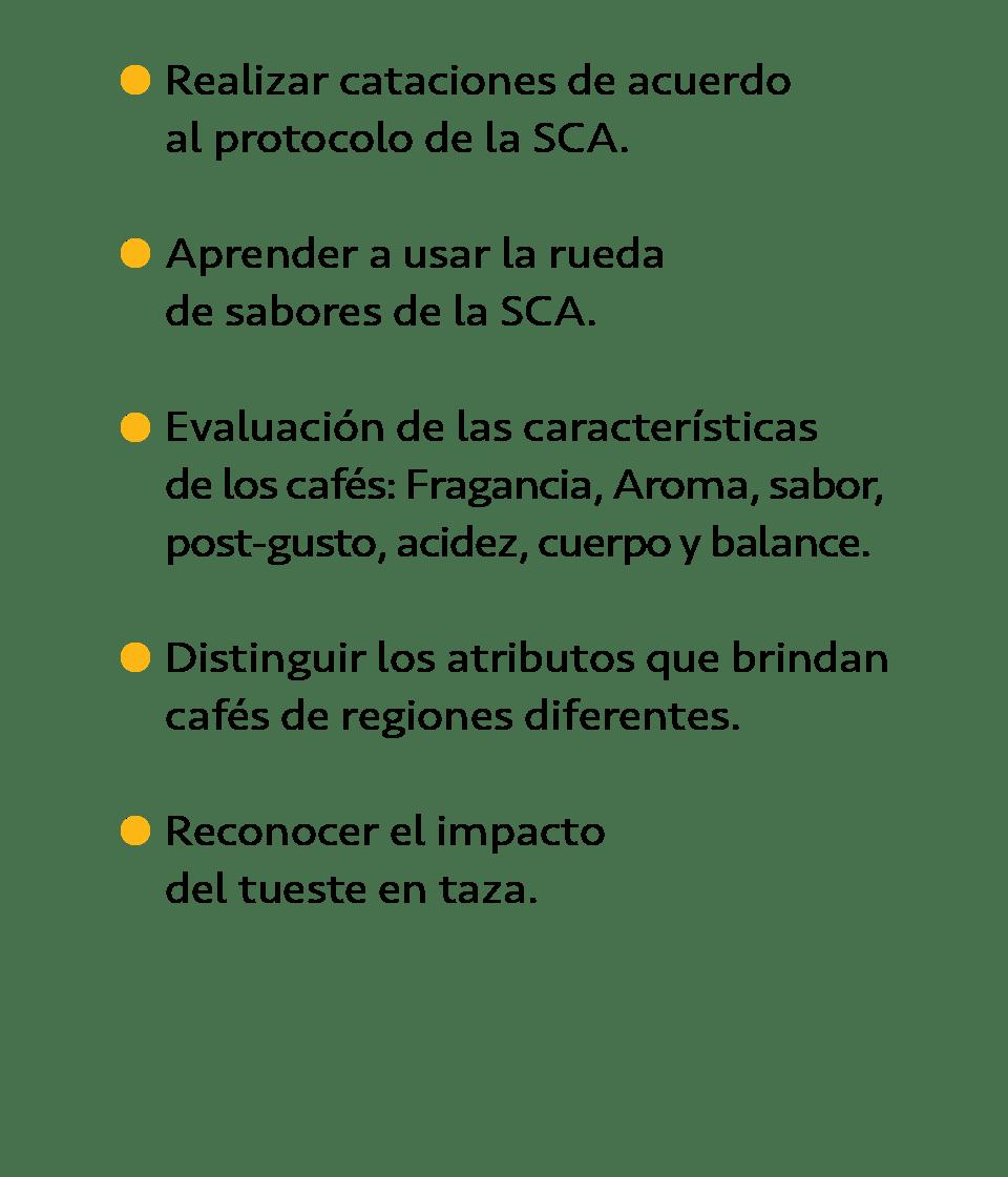 Temario Taller de Catacion con cafés mexicanos