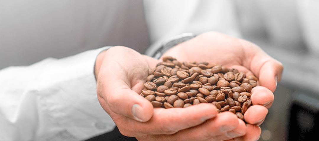 Conocimiento en las variedades del café