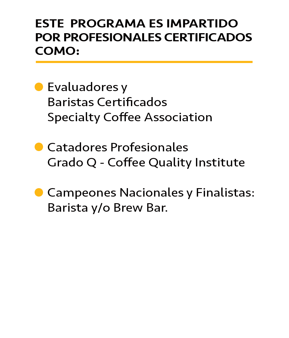 Taller Brew Bar Intermedio Imparte