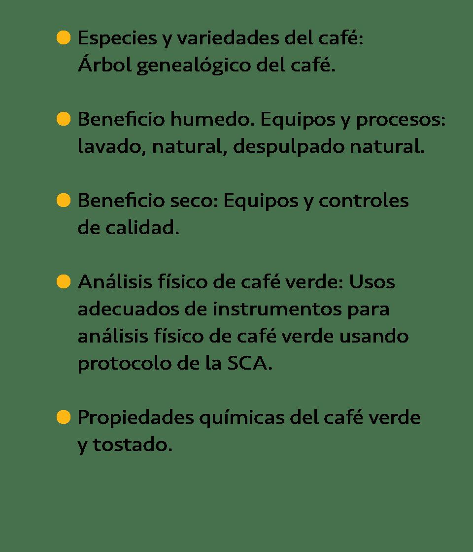 Taller básico de tostado de café Aprenderas