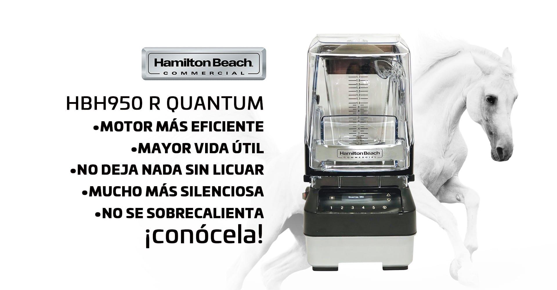 Hamilton Beach HBH 950 Quantum