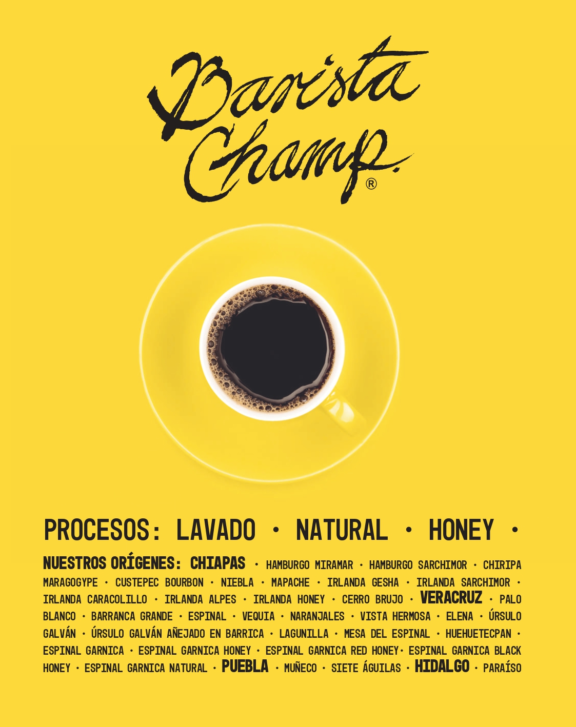 Café de especialidad Barista Champ