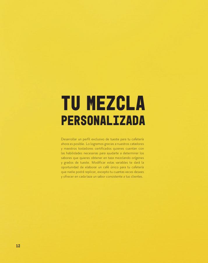 Tu_Mezcla_Personalizada_01